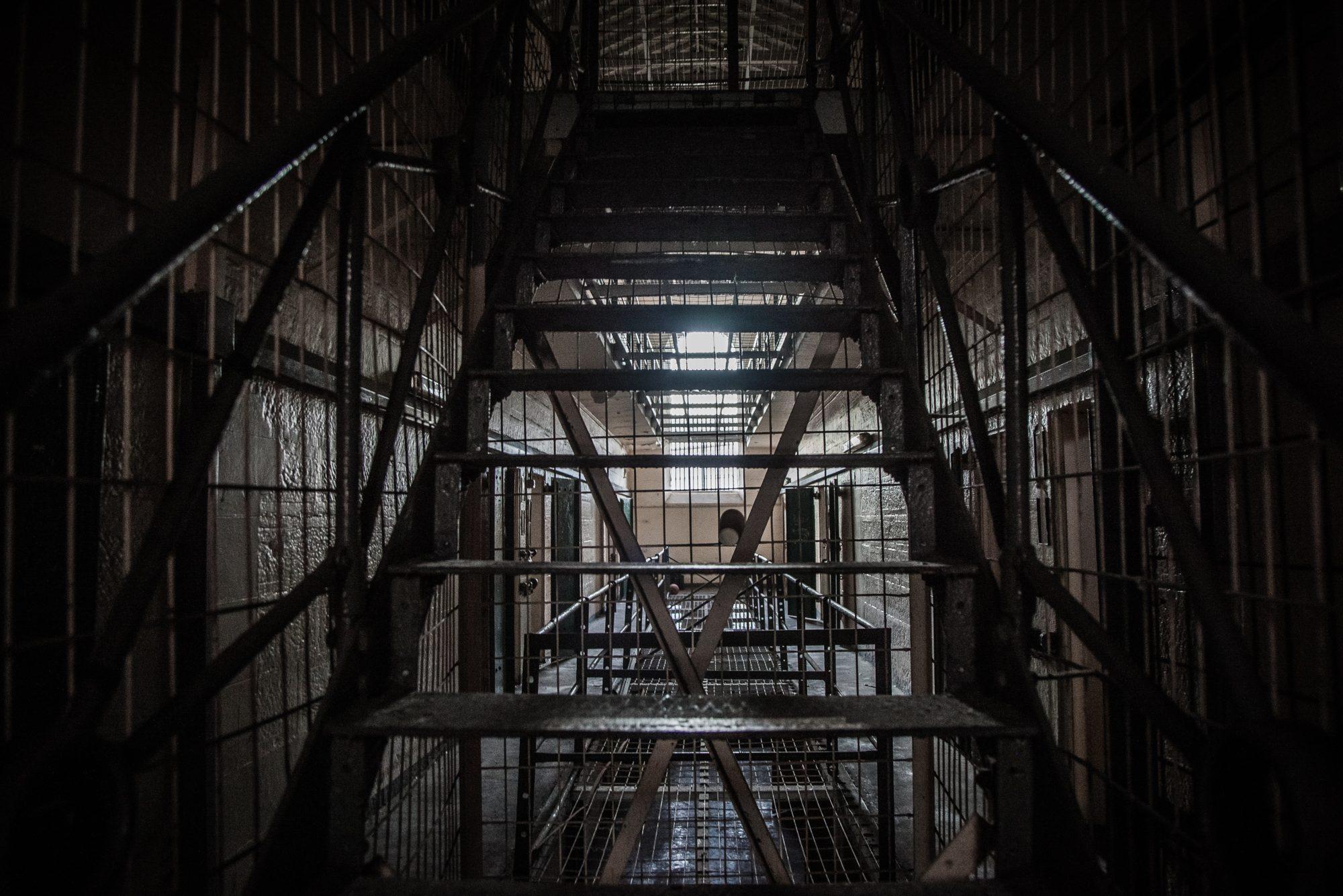 Wie dieren eet, hoort in de gevangenis